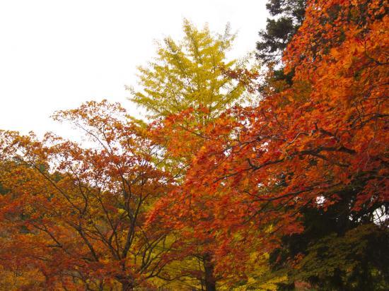 2013/10/27 高野山 - 5