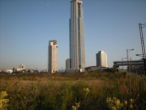 WTC 遠景